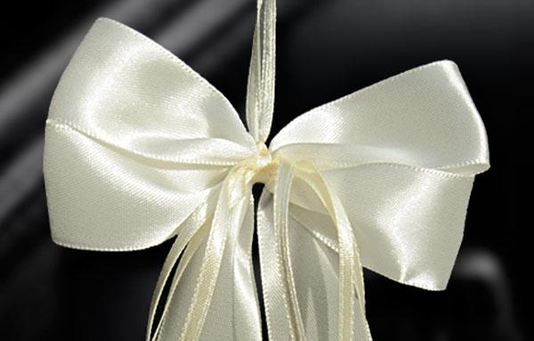 20 antennenschleifen champagner spiegelschleifen. Black Bedroom Furniture Sets. Home Design Ideas